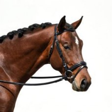 Bobby's 2933 padded crown Signature dressage bridle