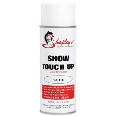 Shapley's Show Touch Up Spray