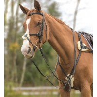 Shires 5-point breastplate w/martingale