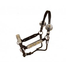 Tory Maybach Congress show halter