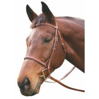 HDR plain raised hunt bridle
