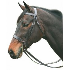 HDR flat horse hunting bridle