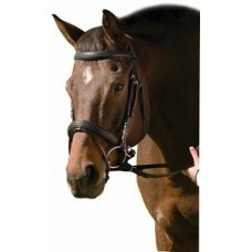 HDR Pro Collection raised padded dressage bridle