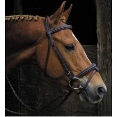 SW Signature raised padded crown dressage bridle Draft size