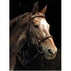 SW Signature raised padded and stitched snaffle bridle