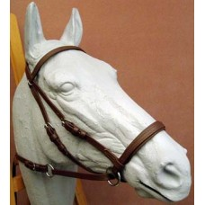 Dr. Cook's Bitless Bridle