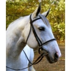SW Elite padded crown draft horse dressage bridle