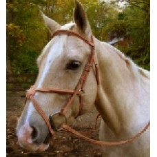 SW Signature figure 8 draft horse bridle