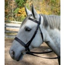 SW Elite flat draft horse hunting bridle