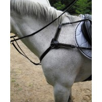 SW 5-point breastplate w/martingale