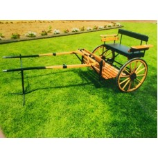 Easy entry pleasure cart with arm rests