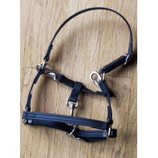 Griffinbrook convertible grooming beta mini halter